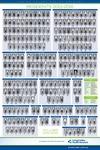 LVHN Medical Residents 2015-2016